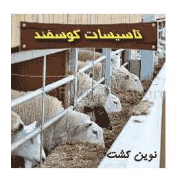همه چیز در مورد بهداشت جایگاه گوسفند (پاور پوینت )