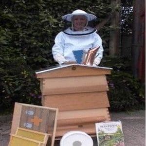 آموزش پرورش زنبور عسل برای تازه کاران