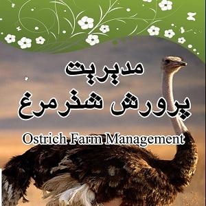 دانلود راهنمای آموزش پرورش شتر مرغ pdf