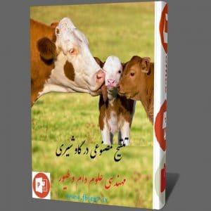 دانلود سمینار تلقیح مصنوعی در گاو شیری Artificial insemination پاورپوینت ppt
